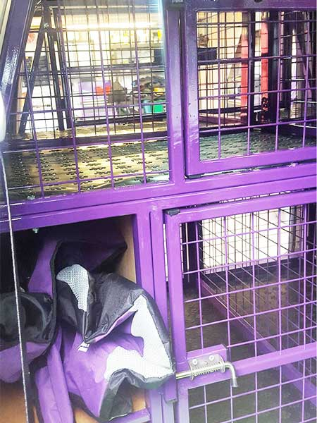 Canine Cage Craft dog build example 1